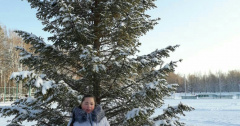 Названа вторая ёлка-победительница фотоконкурса «Ёлка-2019» на Русском радио Томск