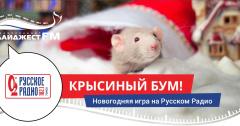 Крысиный Бум на Русском Радио Томск